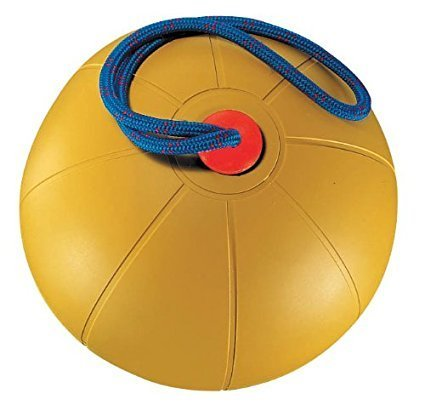 CHAMPION SPORTS EQUIPPED MEDICINE BALL