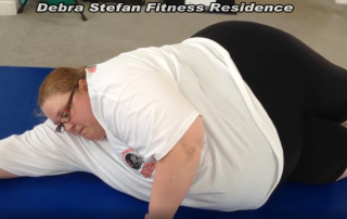 What is Obesity Disability?